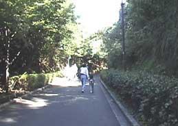 金沢動物園4